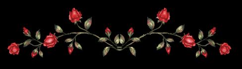 red rose divider