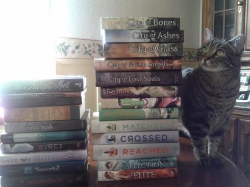 Wink books intent stare