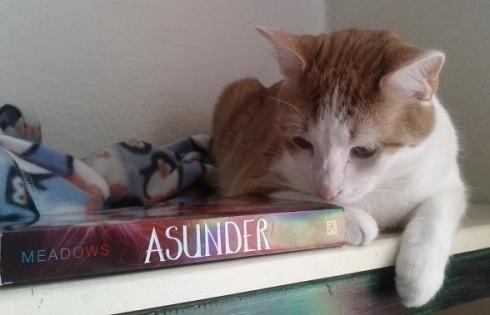 9 Vinnie Asunders